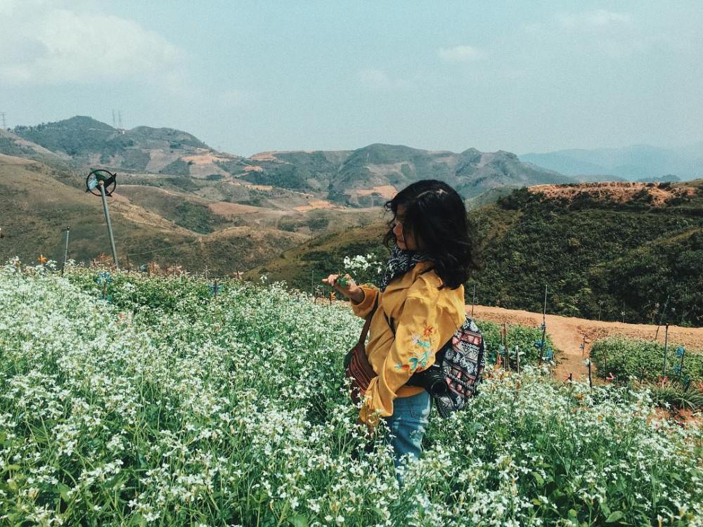 Đến khu du lịch Pha Đin Pass check-in thung lũng hoa đẹp tựa cổ tích của vùng Tây Bắc 14:20   17/05/2019