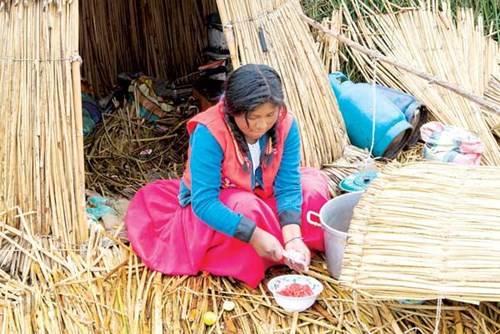 Khám phá Titicaca kỳ diệu 10:28   29/04/2016